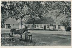 heidkrug-32