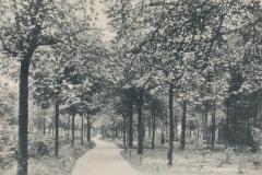 buergerpark-5