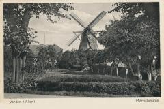 hoenisch-19