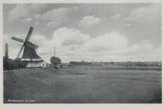 hoenisch-24