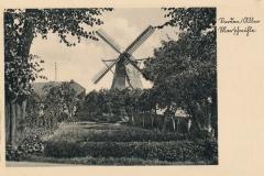 hoenisch-36