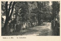 sachsenhain-17