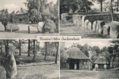 sachsenhain-23