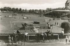 stadion-36