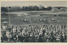 stadion-44