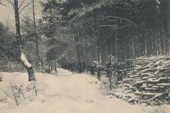 buergerpark-43