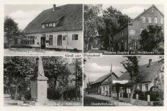 Behnke_Hermann-1